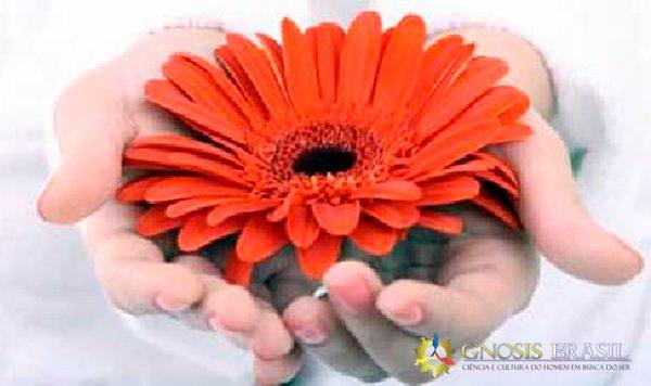 a.generosidade.gnosis.brasil