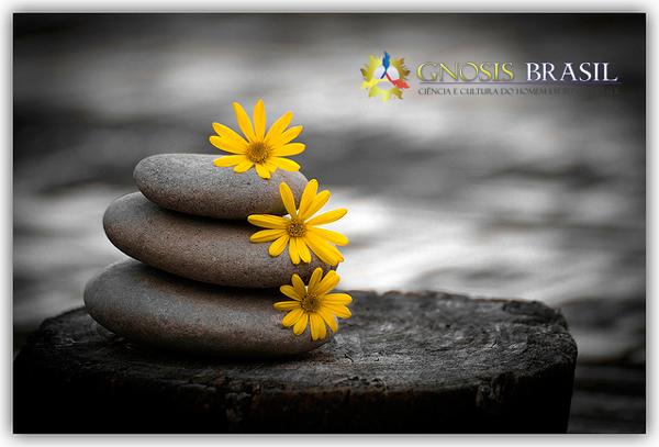 meditacao.gnosis.brasil.01