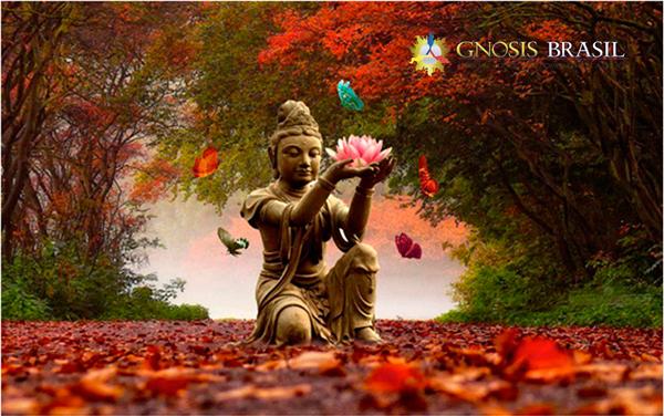 meditacao.interna