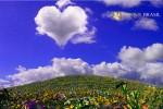 o-amor-consciente