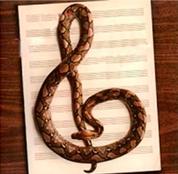 Terapia-Musical-–-Parte-III
