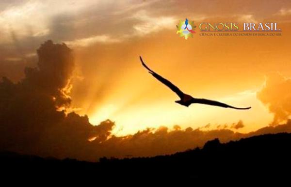 CRENÇA E FANATISMOS em busca da liberdade