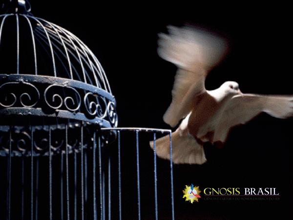 CRENÇA-E-FANATISMOS-liberdade