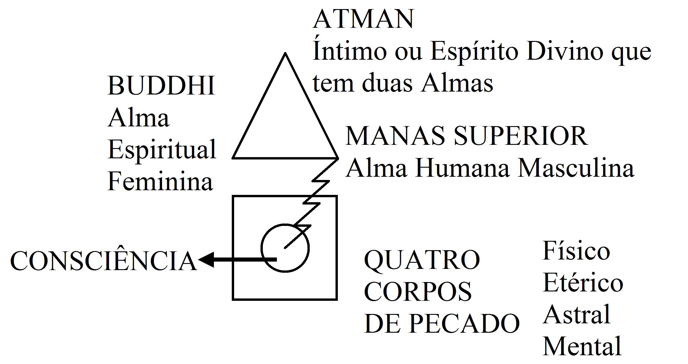 Diagrama Interno