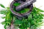 Medicina-Natural-–-Alternativa-ou-Solução