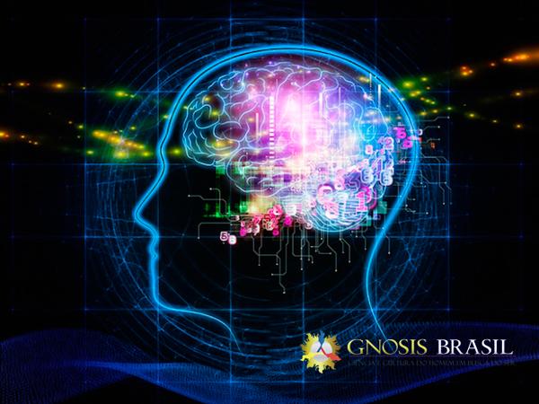 O-Inferno-das-Drogas-cerebro