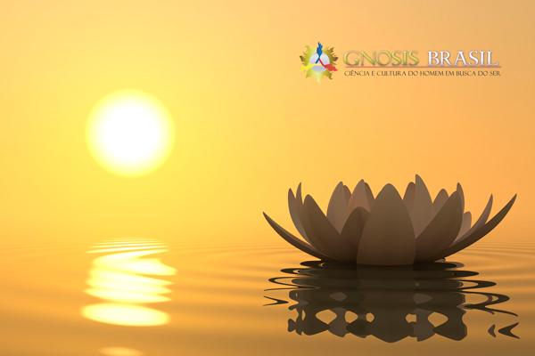 a-concentração-leva-a-meditação-gnosis-brasil