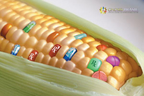 a-verdade-sobre-os-alimentos-transgenicos-1